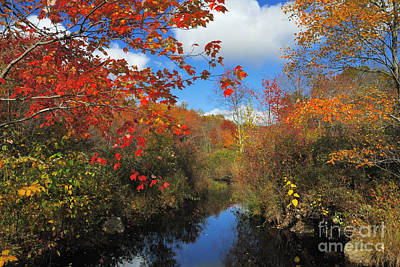 Fall In New England 2 Art Print