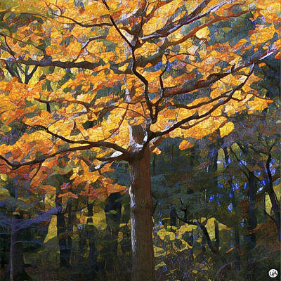 Photograph - Fall In New York by Unhinged Artistry