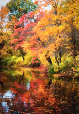 Photograph - Fall In Oakdale by Vicki Jauron