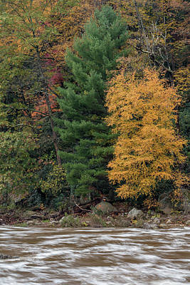 Photograph - Fall In Ohiopyle by Jim Cheney