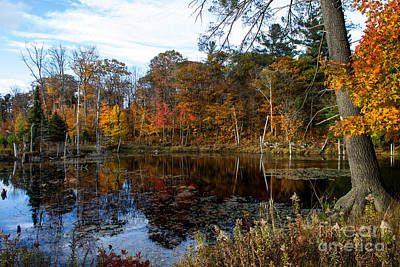 Wall Art - Photograph - Fall In Parry Sound by Marj Dubeau