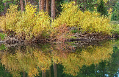 Photograph - Fall In Reflection 2 by Jonathan Nguyen