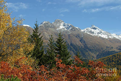 Photograph - Fall In St. Moritz by Stan and Anne Foster