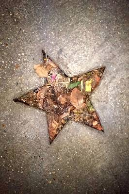 Photograph - Fall In Star by Michael Hoard