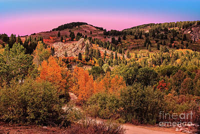 Photograph - Fall In The Owyhee Mountains by Robert Bales
