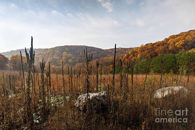 Photograph - Fall In The Ozarks by Dennis Hedberg