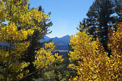 Photograph - Fall In The Rockies by Broderick Delaney
