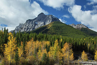 Photograph - Fall In The Rockies by Celine Pollard