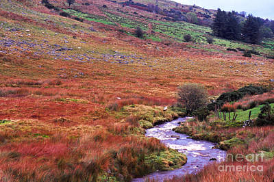 Fall In The Sperrin Mountains Art Print by Thomas R Fletcher