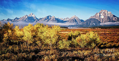 Photograph - Fall In The Tetons by Scott Kemper