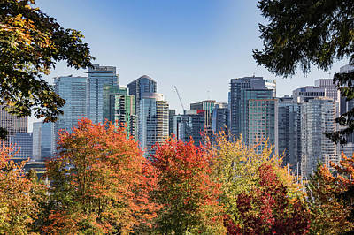 Photograph - Fall In Vancouver by Ross G Strachan
