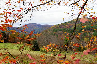 Fall In Vermont Art Print