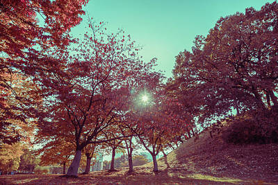 Photograph - Fall In Vintage Style by Hyuntae Kim