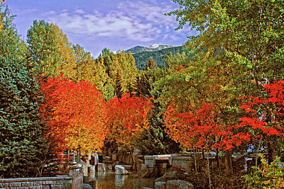 Photograph - Fall In Whistler by Lynn Bauer