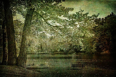 Photograph - Fall In Wisconsin Rapids by Susan McMenamin