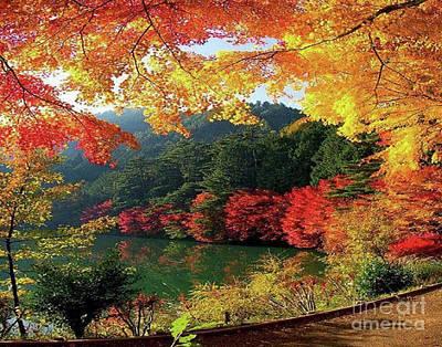 Photograph - Fall Kaleidoscope by Rod Jellison