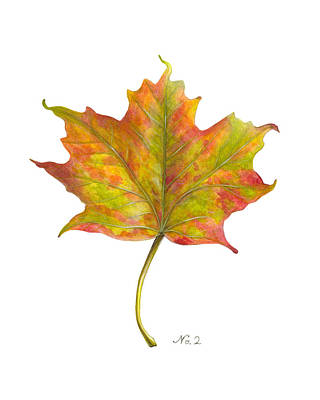 Old World Still Life Painting - Fall Leaf No. 2 by Kelsey Wilson