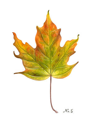 Old World Still Life Painting - Fall Leaf No. 5 by Kelsey Wilson