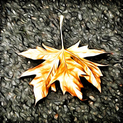 Photograph - Fall Leaf by Steve McKinzie