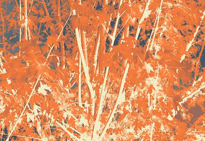Fall Leaves #3 Art Print