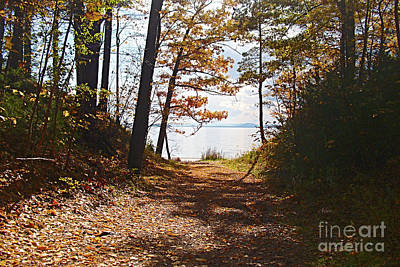 Photograph - Fall Leaves At Leddy Park Lake Champlain Vermont by Felipe Adan Lerma