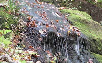 Fall Leaves In A Waterfall Art Print