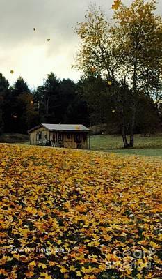 Photograph - Fall Leaves - No. 2015 by Joe Finney