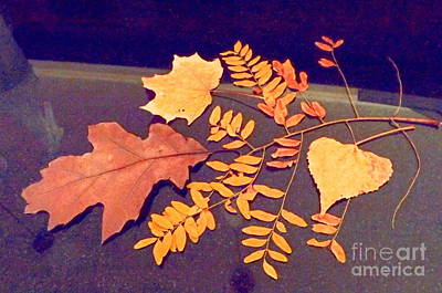 Digital Art - Fall Leaves On Granite Counter by Annie Gibbons
