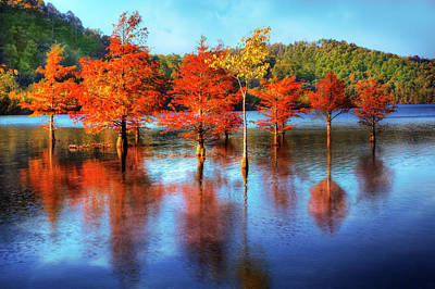 Photograph - Fall Line Up by Debra and Dave Vanderlaan