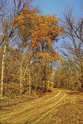 Photograph - Fall - Loess Hills by Nikolyn McDonald