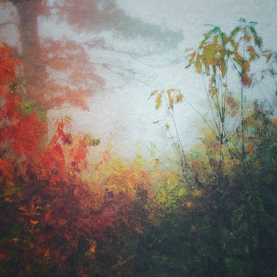 Photograph - Fall Magic by Melissa D Johnston