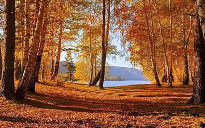 Nature Digital Art - Fall by Maye Loeser