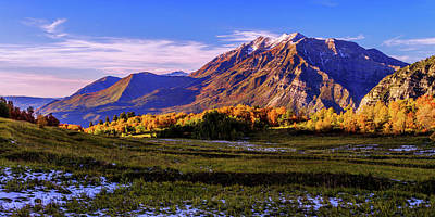 Rockies Photograph - Fall Meadow by Chad Dutson