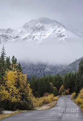 Photograph - Fall Meet Winter by Dee Cresswell