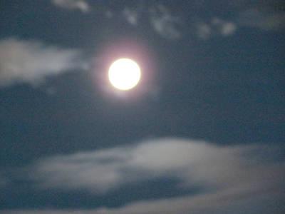 Photograph - Fall Moon by Bonnie Muir