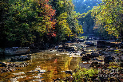 Photograph - Fall Morning Along Williams River by Thomas R Fletcher