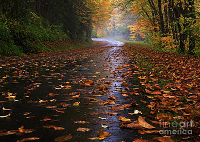Photograph - Fall Morning, Great Smoky Mountains National Park by Schwartz Nature Images