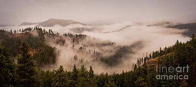 Pacificnorthwest Photograph - Fall Mountain Fog by Andrea Goodrich