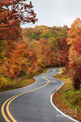 Photograph - Fall Mountain Road by Jill Lang