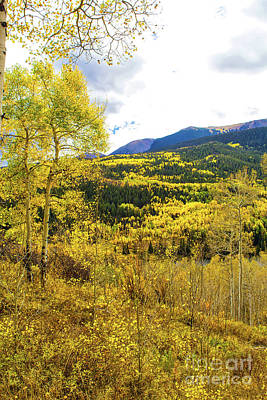 Photograph - Fall Mountain Scenery by Steven Parker