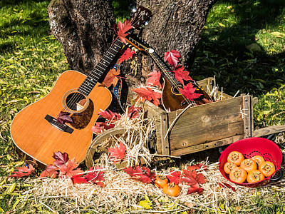 Photograph - Fall Music And Persimmons by Mick Anderson