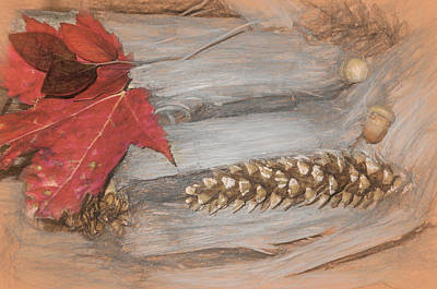 Digital Art - Fall Nature Still Life by Rusty R Smith