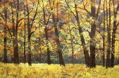 Fall Oaks In El Capitan Meadow Yosemite National Park Art Print by Connie Tom