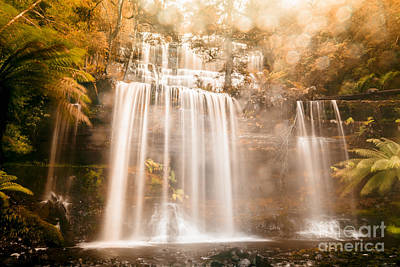 Ledge Photograph - Fall Of Autumn  by Jorgo Photography - Wall Art Gallery