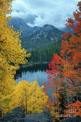 Photograph - Fall On Bear Lake by Ronda Kimbrow