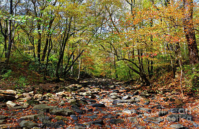 Photograph - Fall On Clifty Creek by Paul Mashburn
