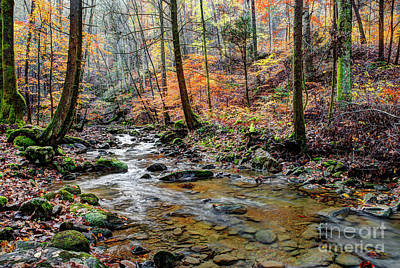 Photograph - Fall On Judge Branch Creek by Paul Mashburn