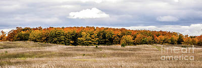 Photograph - Fall On Lautner Land by Grace Grogan