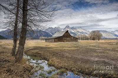 Photograph - Fall On Mormon Row - Grand Teton National Park by Sandra Bronstein