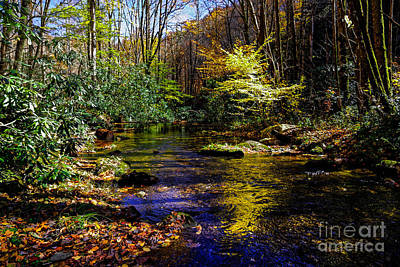 Creative Charisma - Fall On Rough Creek by Paul Mashburn